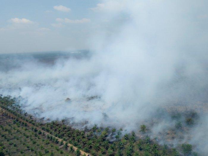Udara di Riau, Sumsel dan JambiBerbahaya, Tim Medis Dikerahkan
