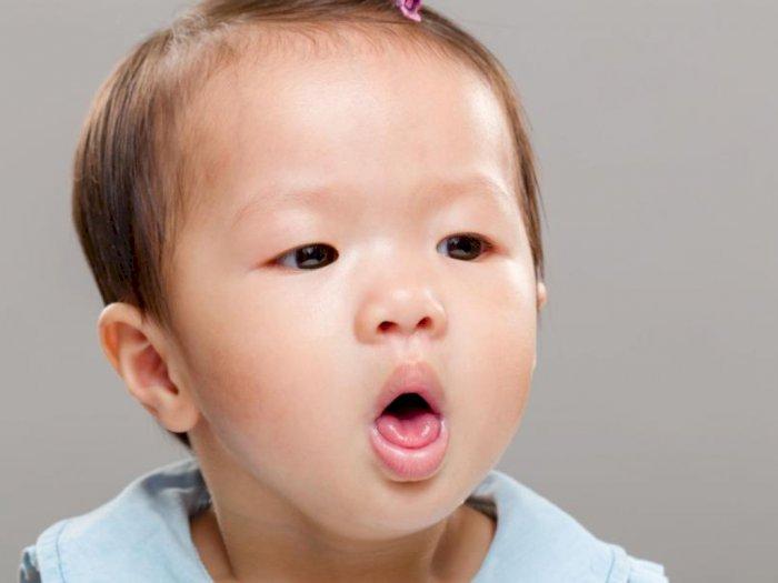 5 Rekomendasi Produk Obat Batuk Anak Usia 1 Tahun