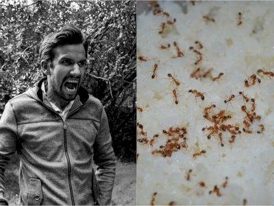 Suami Menganiaya Istrinya karena di Makanan Ada Semut