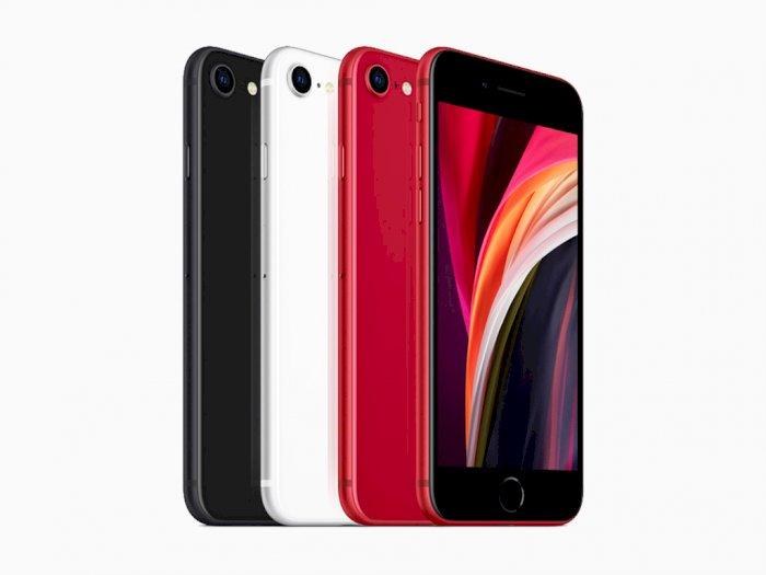 Resmi! Apple Akhirnya Umumkan Kehadiran iPhone SE 2020