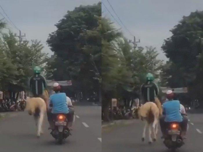 Pria Beratribut Ojol Tunggangi Kuda di Solo Curi Perhatian Netizen