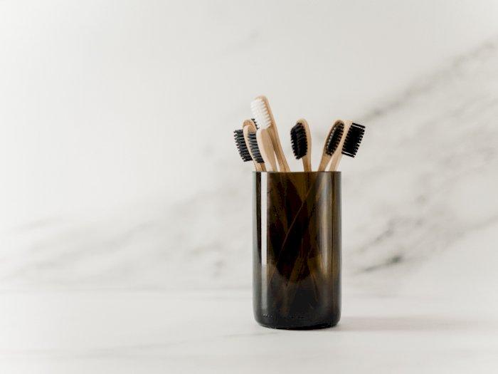 Supaya Terhindar dari Kuman, Ini Tips Menyimpan Sikat Gigi dengan Benar