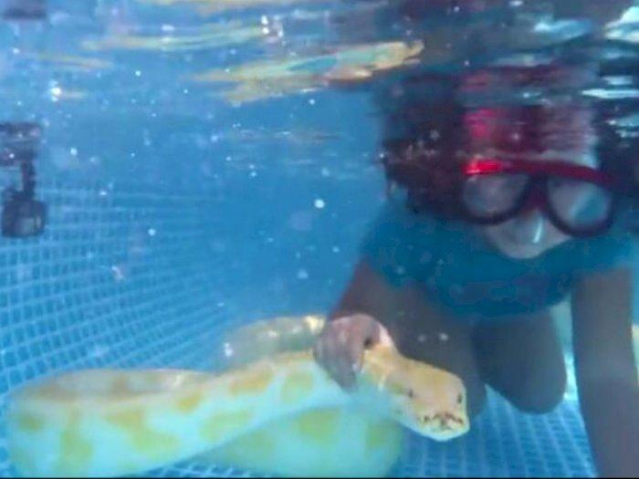 Nggak Ada Takutnya, Gadis Cilik Ini Hobi Berenang Bareng Ular Piton