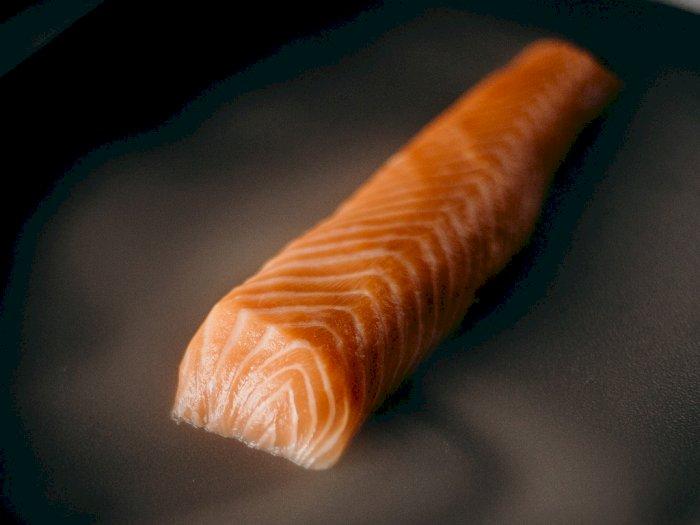 Jenis Ikan Terbaik untuk Membantu Meningkatkan Pertumbuhan Rambut dan Mencegah Kerontokan