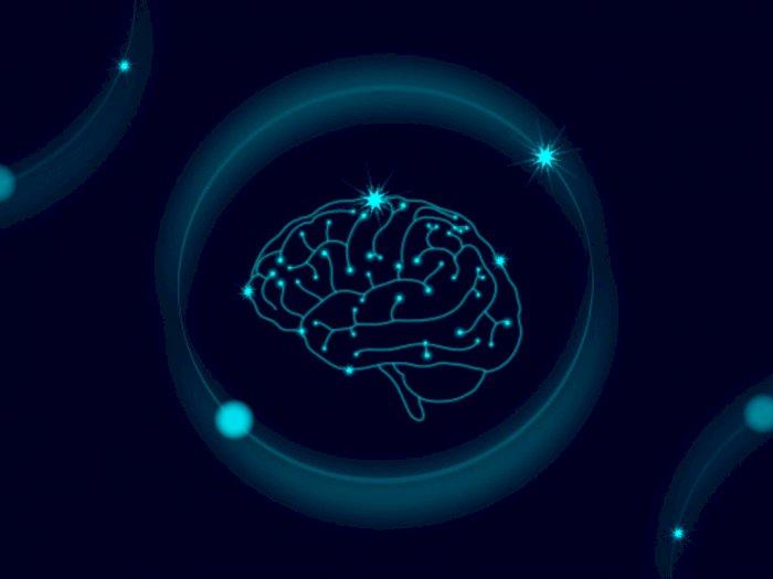 Mengenal Aneurisma Otak yang Bisa Membahayakan Kesehatan