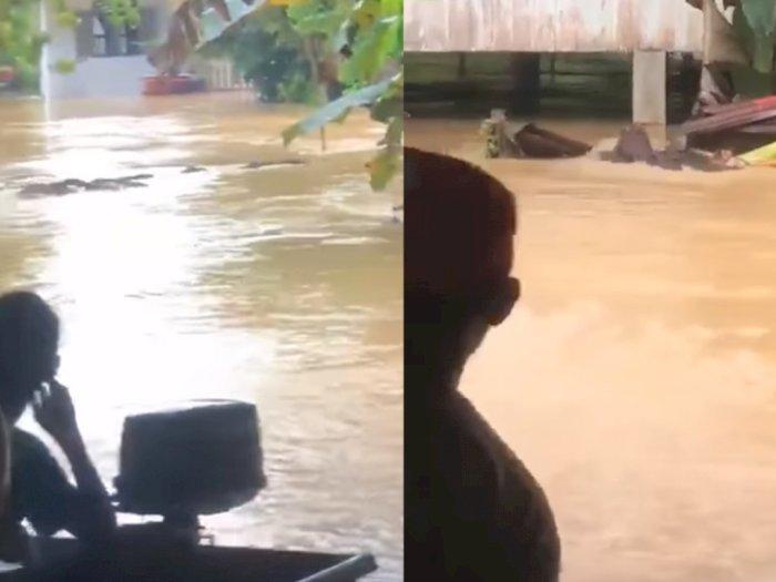 Hewan Ini Berenang Selamatkan Diri dari Banjir, Malah Diusir Warga, Bukti Egoisnya Manusia