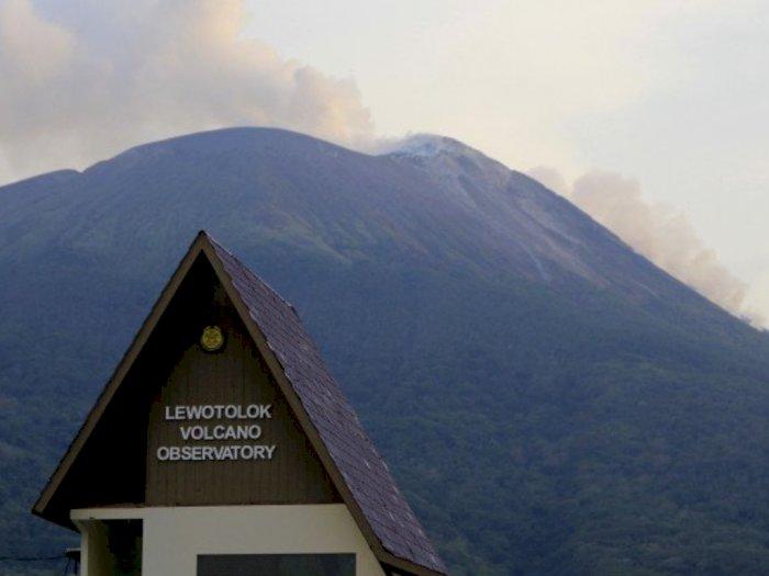 Abu Erupsi Gunung Ili Lewotolok Mencapai 1000 Meter Berdurasi 25 Menit Serta Gemuruh