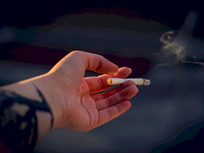 Perokok Berisiko Lebih Rendah Tertular Covid-19, Benarkah?
