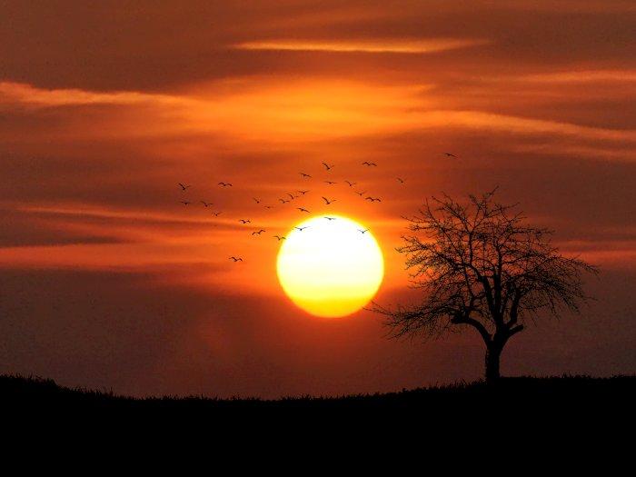 Beredar Kabar NASA Sebut Matahari akan Terbit dari Barat, Benarkah?