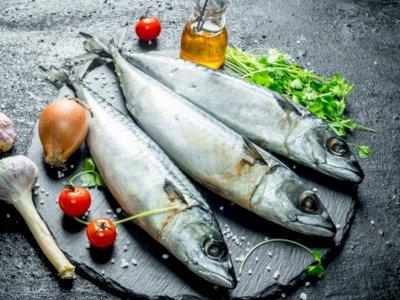 Penuhi Gizi Sehari-hari, Ini 5 Jenis Ikan yang Paling Sehat Untuk Dikonsumsi!