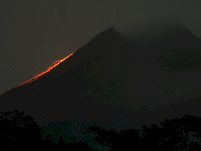 Aktivitas Vulkanik Gunung Merapi: 39 Guguran Lava dan 1 Kali Awan Panas