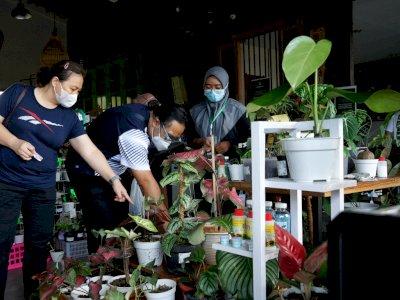 FOTO: Pameran Tanaman Hias Kebun Bupati di Yogyakarta