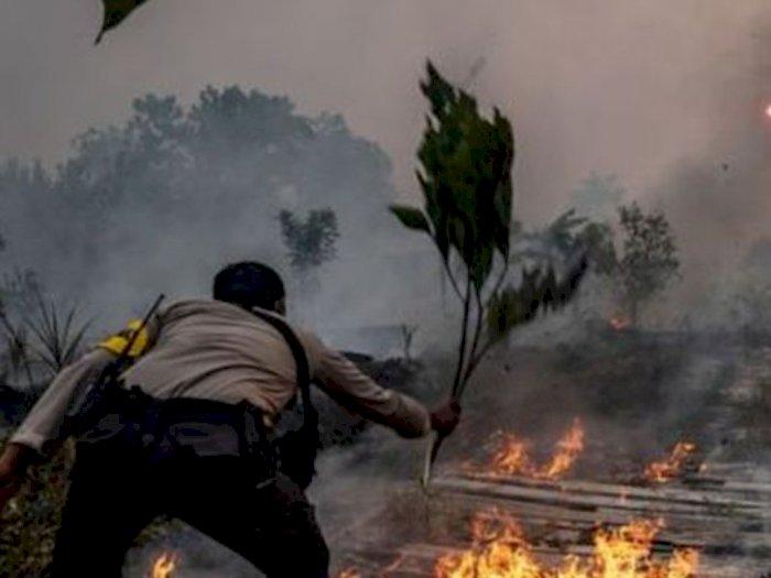 Polda Riau Klaim Telah Lakukan Upaya Pemadaman di 129 Titik Api dari 141 Titik Panas