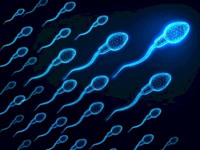 Masih Penasaran, Benarkah Sperma Bisa Menyembuhkan Jerawat?