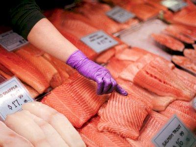 Jadi Campuran Makanan Sushi, Inilah Fakta Unik Ikan Salmon