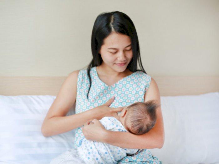 Teruntuk Calon Ibu, Ini Hal-Hal yang Harus Diperhatikan dalam Menyusui Bayi Baru Lahir