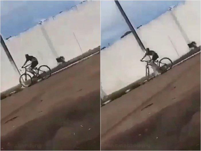 Apes, Pemuda Ini Asyik Naik Sepeda Lihat ke Arah Bawah,  Ending-nya Mukanya Bonyok