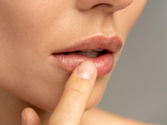Atasi Bibir Kering dengan 3 Bahan Alami Berikut