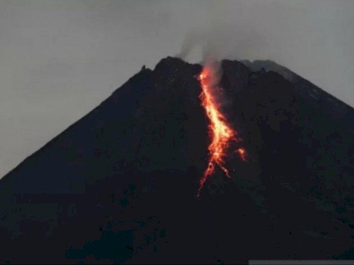 Gunung Merapi Kembali Luncurkan 17 Kali Guguran Lava Pijar