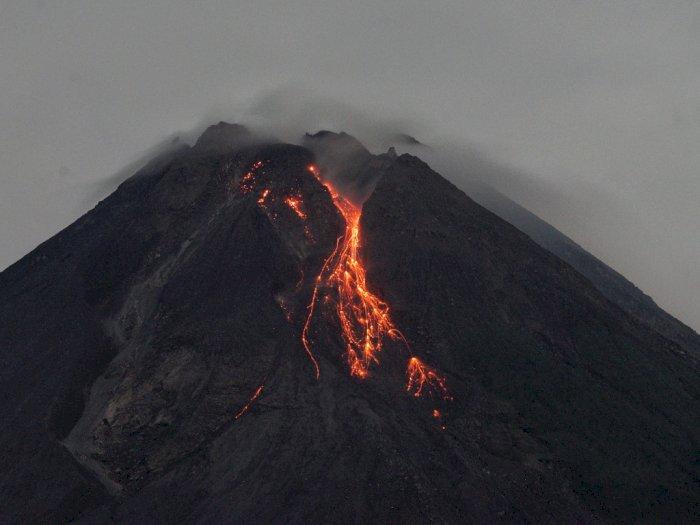 Kamis Pagi, Gunung Merapi Lima Kali Muntahkan Guguran Lava Pijar
