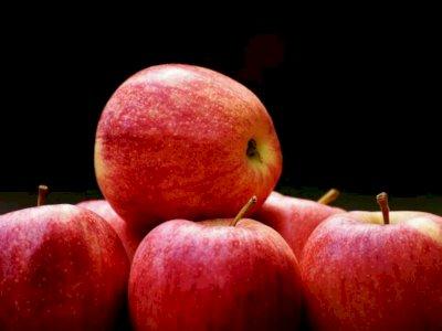 Banyak Manfaat, 6 Buah yang Wajib Dikonsumsi saat Buka Puasa dan Sahur