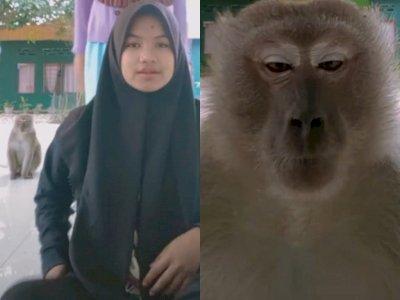 Mau Joget TikTok, Dua Gadis Ini Malah Lari Gegara Monyet, Netizen: Mungkin Mau Ikutan!