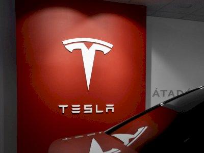 Pabrik Mobil Tesla di Nevada Disebut Ancam 'Rumah' Puluhan Ribu Kuda Liar!