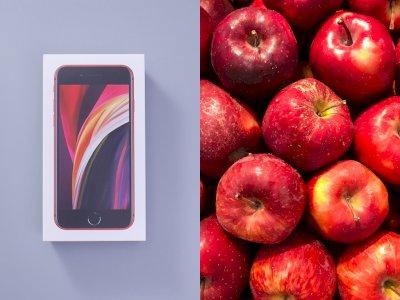 Niatnya Beli 1 Karung Apel via Online, Pria Ini Dapatkan Hadiah Apple iPhone SE!
