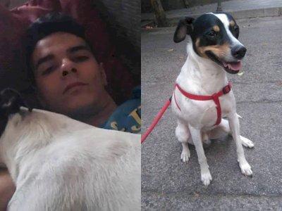 Tega! Pria Ini Mutilasi Ibunya Jadi 1.000 Bagian dan Makan Daging Ibunya Bersama Anjingnya