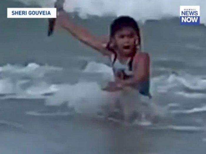 Momen Gadis 6 Tahun Lari Ketakutan Melihat Hiu di Belakangnya saat Bermain di Laut