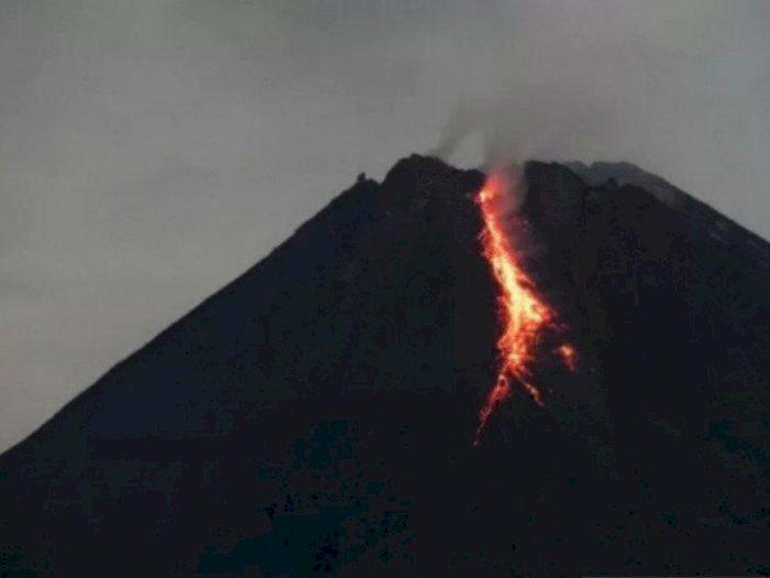 Minggu Dini Hari, Gunung Merapi Luncurkan Guguran Lava Pijar Sejauh 1 Km