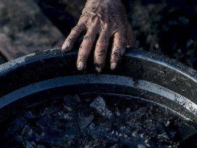 FOTO: Pembuatan Arang Kayu
