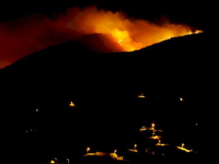 FOTO: Kebakaran Hutan di Pulau Tenerife, Spanyol