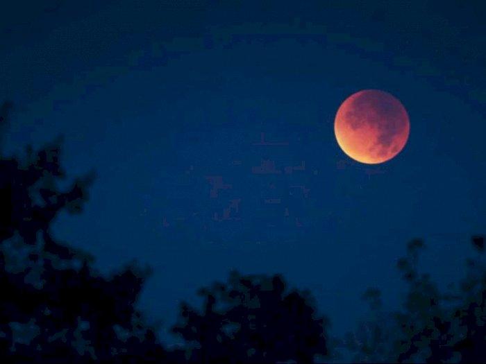 Peneliti Sebut Gerhana Bulan Total Bisa Diamati Setiap 2,5 Tahun Sekali