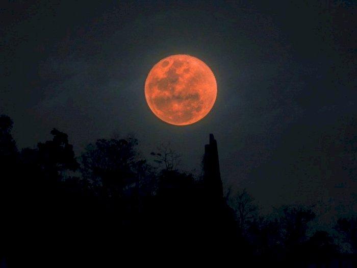 Ada Gerhana Bulan Total Hari Ini, Ini Keistimewannya