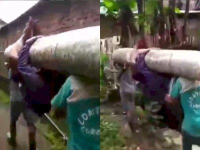 Kocak, Aksi Pemuda yang Gelantungan di Batang Pohon Ini Buat Netizen Emosi!