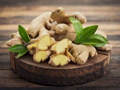 Obat Vertigo Alami Paling Ampuh dari Bahan Herbal