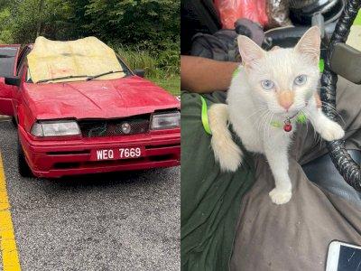 Salut! Netizen Gotong Royong Bantu Pria Tunawisma yang Tinggal di Mobil dengan Kucingnya