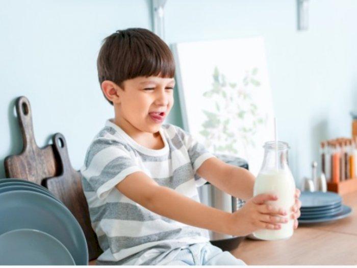 3 Gejala Alergi Susu Sapi pada Anak