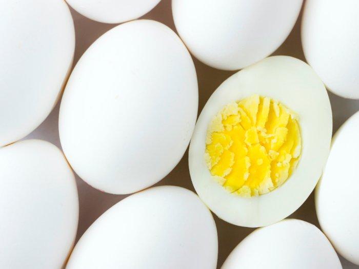 7 Makanan Sumber Vitamin D Pengganti Cahaya Matahari