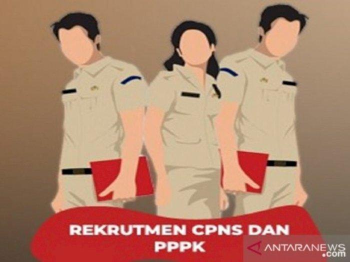 Baru Dibuka, Banyak yang Mengeluh Sulit Masuk Situs Pendaftaran CPNS