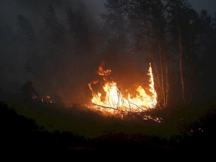 Operasi di Bandara Dihentikan Akibat Kebakaran Hutan Hebat di Rusia