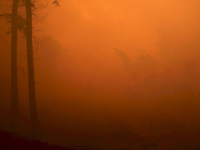 FOTO: Kebakaran Hutan di Siberia Rusia