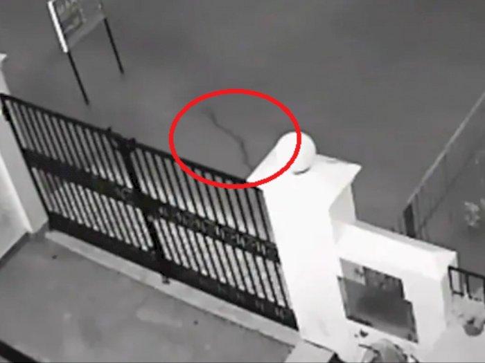 Rekaman CCTV Ular yang Berenang di Luar Gerbang Rumah Setelah Terjadi Banjir, Wih!