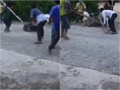 Miris! Pasien COVID-19 Diikat & Dipukuli Warga Pakai Kayu di Tobasa, Diusir Hendak Isoman