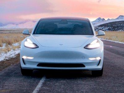 Biaya Perbaikan Kabel Mobil Tesla yang Rusak Karena Dimakan Tikus Capai Rp72 Juta!