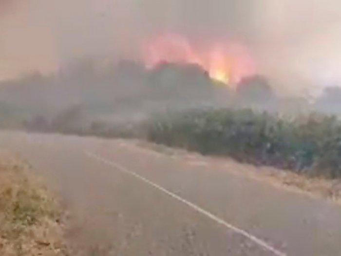 FOTO: Kepulan Asap Kebakaran Hutan di Sardinia, Italia