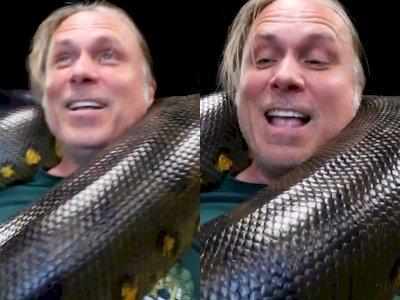 Pecinta Hewan Ini Bermain dengan Ular Anaconda Raksasa Layaknya Main dengan Anak Kecil