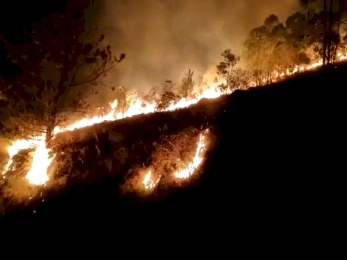 Api Melahap Lahan Seluas 25 Hektar di Samosir, Petugas Berjibaku Memadamkannya Sejak Pagi