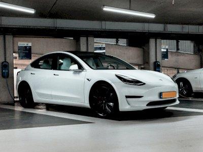 Ingin Lebih Bersaing, Mobil Tesla Besutan China Bakal Dibanderol Rp300 Jutan Saja!